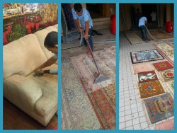 steam extraction carpet upholstery cleaning